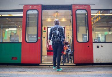Da casa alla stazione. Un sondaggio sulle preferenze di mobilità dei viaggiatori italiani